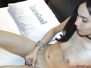 Beautiful Fledgling Thai Shemale Prem Gets Naked And Strokes Her Dick Solo.