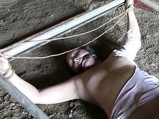 Unexperienced Cougar Outdoor Sadism & Masochism Porno Vid