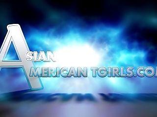 Asain Yankee Tgirls Compilation Promo